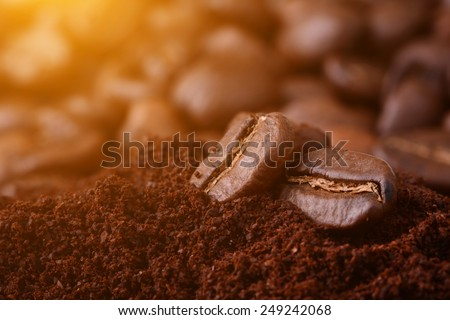 Closeup of flying coffee beans  - stock photo