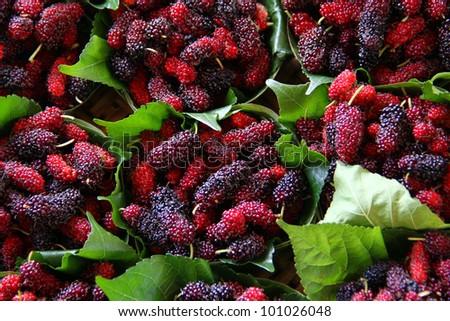 Closeup of fresh berries - stock photo