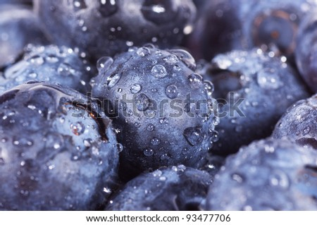 Closeup of fresh blueberries isolated on a white background - stock photo