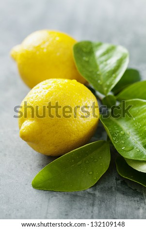 closeup of fresh lemons with droplets - stock photo