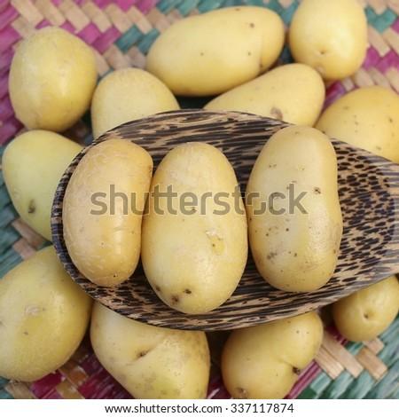Closeup of fresh small potatoes  - stock photo