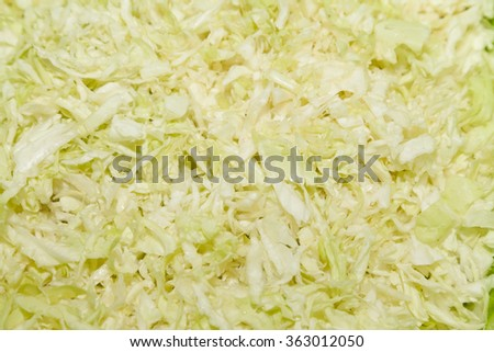 Closeup of freshly cut cabbage salad - stock photo