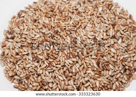 Closeup of fried sunflower seed kernels - stock photo