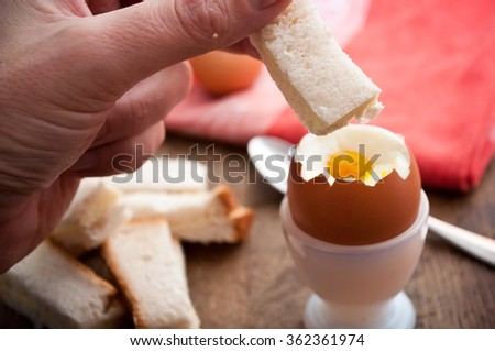 closeup of hand of man eating Soft boiled egg in egg cup and served with toast fingers on wooden table  - stock photo