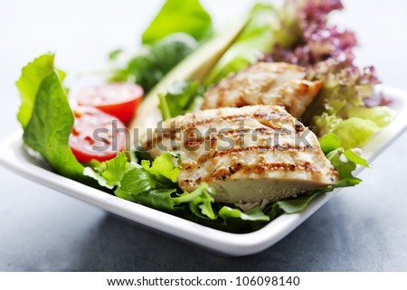 closeup of healthy salad with grilled chicken fillet, selection of lettuce,tomatoes and avocado, - stock photo