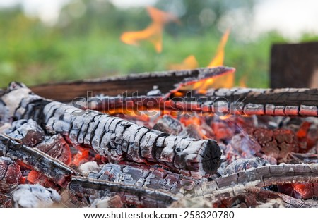 Closeup of hot burning firewood in campfire - stock photo