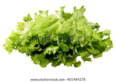 Closeup of lettuce isolated on white background