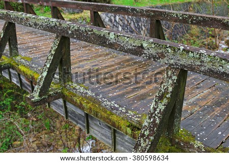 Closeup of Lichen and green moss growing on weathered wooden bridge
