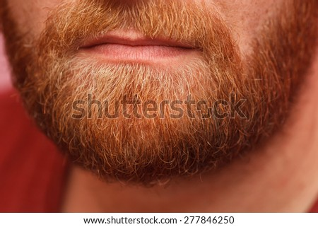Closeup of long beard and mustache man