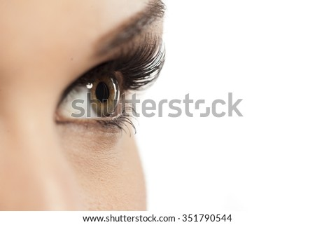 closeup of made-up female eye with artificial eyelashes - stock photo