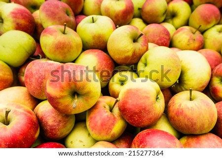 Closeup of many just picked apples on a stack in the orchard. - stock photo