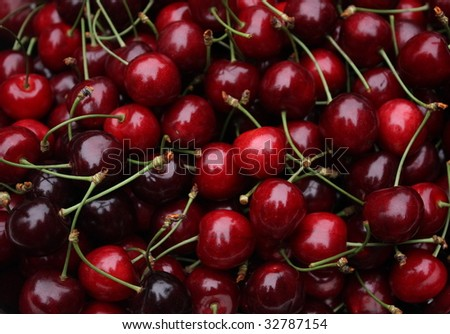 closeup of many sweet, fresh harvested cherries