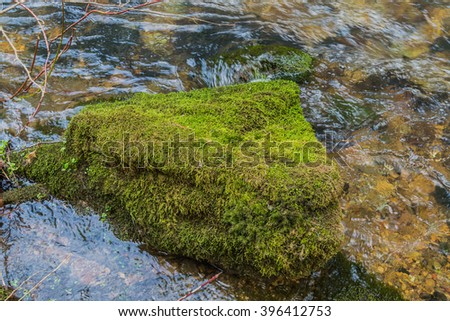 Closeup of mossy rock in flowing water