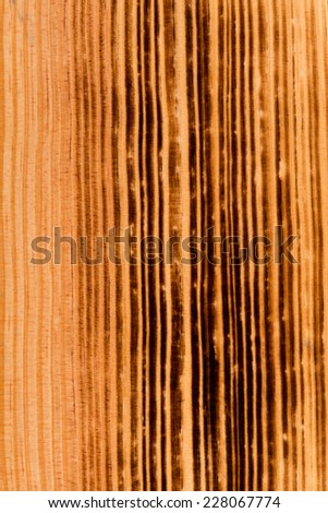 Closeup of natural burned pine wood background - stock photo