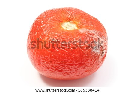 Closeup Of Old Wrinkled Tomato With Mold Unhealthy Food