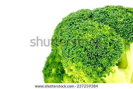 Closeup of organic green broccoli floret with white copyspace - stock photo