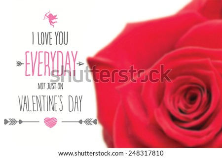 Closeup of pink rose against valentines day greeting - stock photo