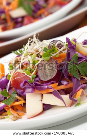 Closeup of red cabbage, carrot, and apple salad with sprouts, red grape, and roasted sunflower seeds served for healthy lunch