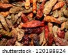 Closeup of red dried chilli background - stock photo
