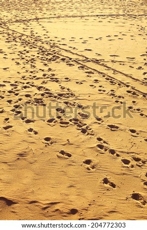 Closeup of sand. Landscape view on human footprints at sandy beach. Relax in resort.