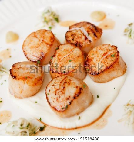 closeup of seared scallops - stock photo