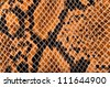 Closeup of snake Skin Leather Texture. - stock photo