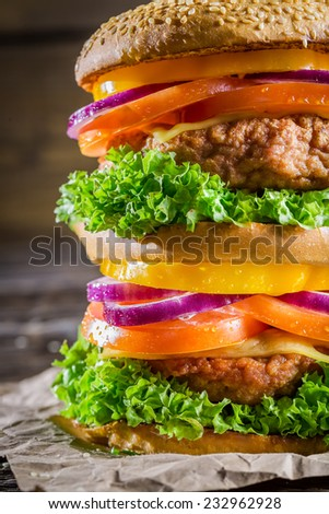 Closeup of tasty homemade big burger - stock photo