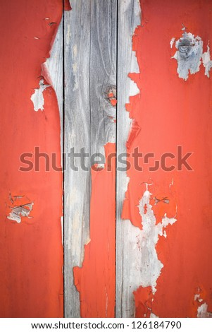 closeup of the peeling paint on aging wooden door