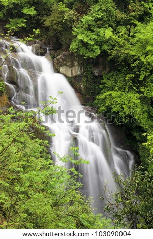 closeup of the waterfall in jungle,original ecological environment