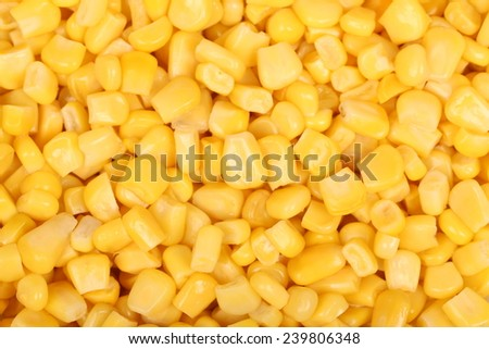 Closeup of tinned whole kernel corn, it could be used as background