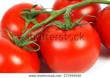 Closeup of tomatoes on the vine, vegetable background - stock photo