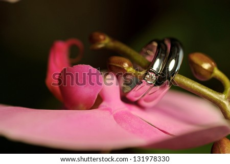 closeup of wedding rings on orchid's buds - stock photo