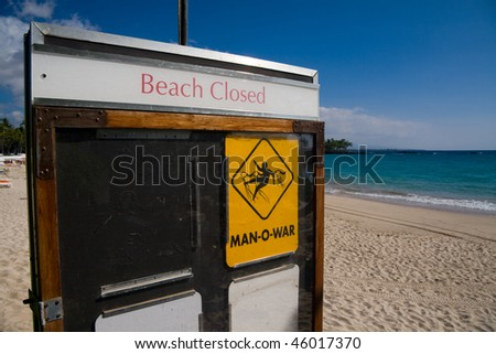 Closeup on a beach closed sign. Dangerous risk of man-o-war stings - stock photo