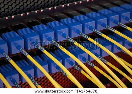Closeup on blue and yellow optic fiber cables connected to data server.