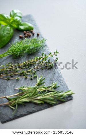 Closeup on fresh spices herbs on stone substrate - stock photo
