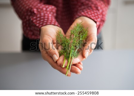 Closeup on young housewife showing fresh dill