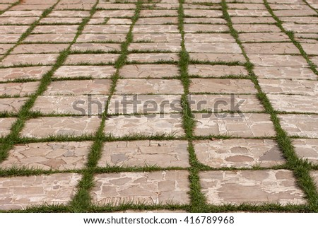 Closeup paving slabs pattern with a sprouted grass - stock photo