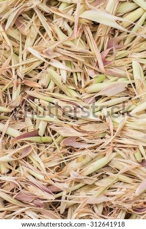 Closeup Photo of Sliced and Dried Lemongrass,Selective Focus,Food Concept,Food Background.