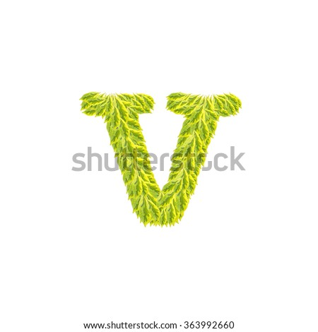 Closeup pile of green leaves in V english alphabet isolated on white background