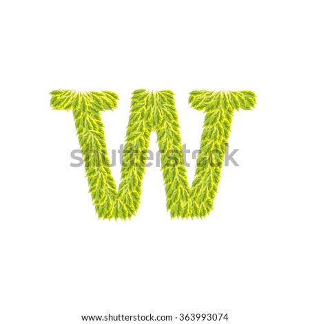 Closeup pile of green leaves in W english alphabet isolated on white background