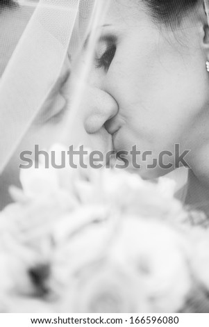 Closeup portrait of bride and groom kissing passionately under veil - stock photo