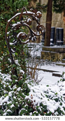 Closeup shot of an abstract shape at the bottom of which creepers and leaves are seen covered deeply in snow