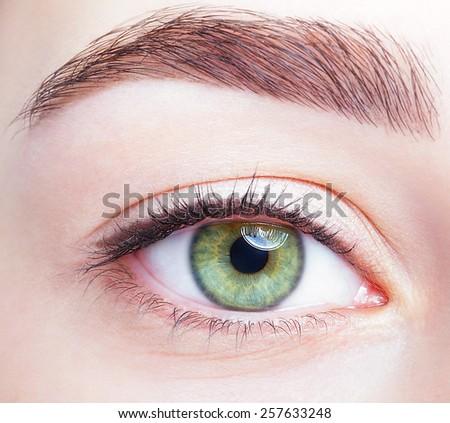 Closeup shot of female green pistachio colour eye  with day makeup - stock photo