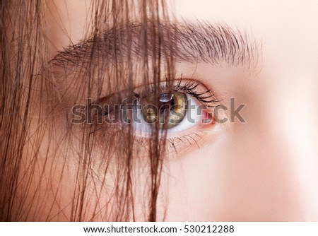 Closeup shot of hazel eyed female eye makeup