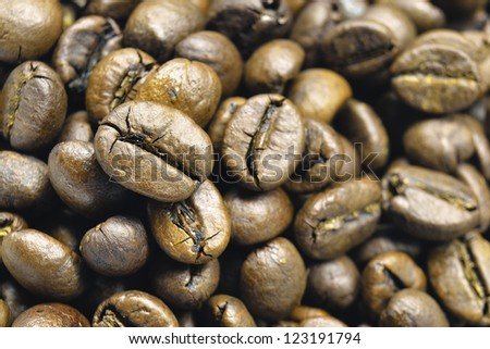 closeup shot of roasted coffee beans; focus on central bean