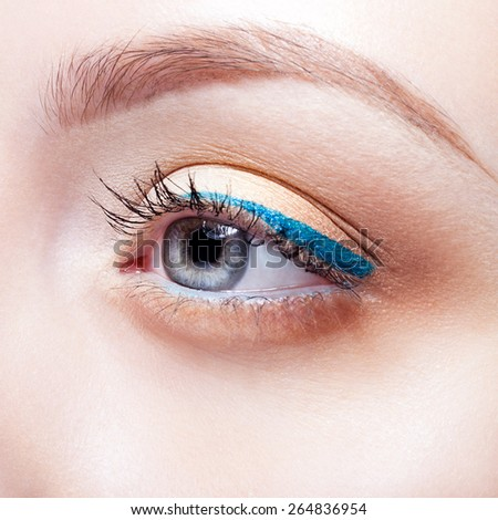 Closeup shot of woman eye with day makeup and blue arrow - stock photo