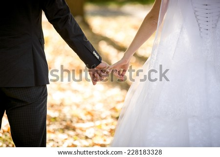 Closeup shot of young bride and groom holding hands at park - stock photo