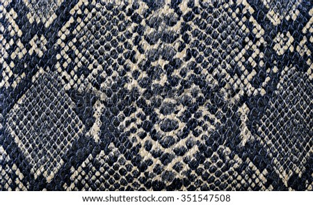 closeup snake skin background texture