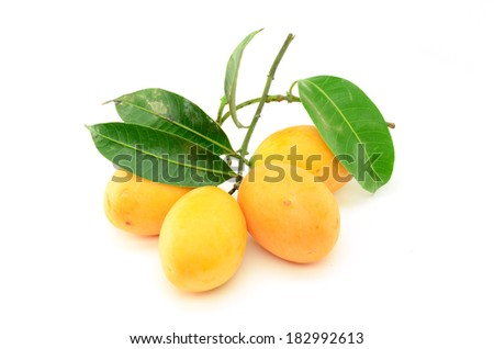 Closeup sweet Marian plum fruit isolate on white background(Mayongch id Maprang Marian Plum and Plum Mango,thailand)