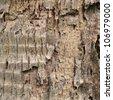 Closeup texture of old natural bark - stock photo